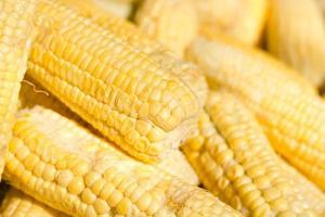 Grains of ripe corn.