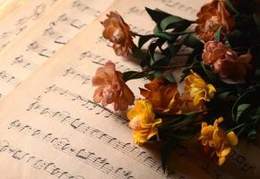 musical notes and flowers