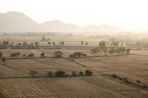 Cultivated farmland