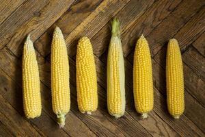 Mazorcas de maíz sobre un piso de madera, vista superior