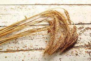 Rye (Barley) Ears