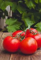 Tomates maduros sobre fondo de madera foto