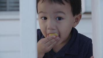 cámara lenta de niño comiendo bocadillos video