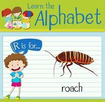 la lettera r di flashcard è per lo scarafaggio vettore