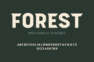 Bold Decorative Display Font vector