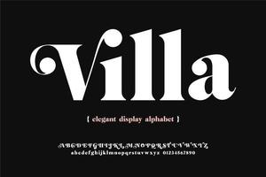 Bold Elegant Display Typeface vector