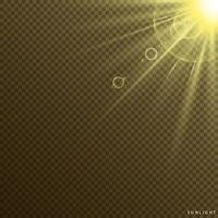 Transparent Sun Flash with Spotlight vector
