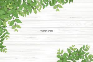 textura de madera con hojas verdes en las esquinas vector