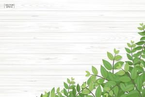 Wood texture with green leaves in bottom corner vector