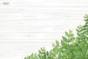 Textura de madera con hojas verdes en la esquina inferior. vector