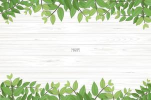 textura de madera con borde superior e inferior de hoja verde vector