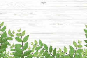 Wood texture with green leaves along bottom vector