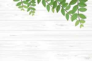 Wood background with green leaves along top vector
