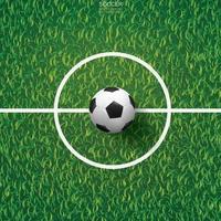 Soccer or football on field inside center line area vector