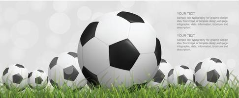Soccer or footballs in green grass with bokeh vector