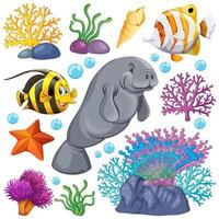 Set of sea creatures and coral on white