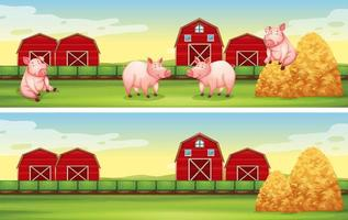 Scenes with pigs on the farm vector
