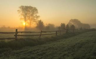 foggy, sunny morning in the countryside photo