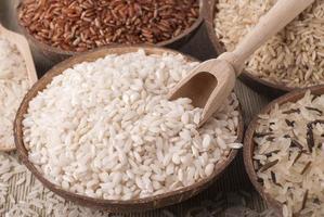 Rice photo