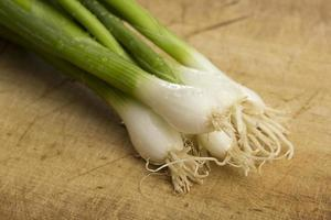 Green onions photo