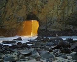 playa estatal de pfieffer foto