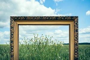 marcos de fotos en la naturaleza iii