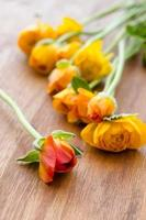 Yellow roses bouquet on a wooden surface photo