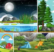 Four different nature scenes of forest and camping