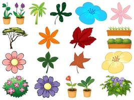 Conjunto de diferentes plantas sobre fondo blanco.