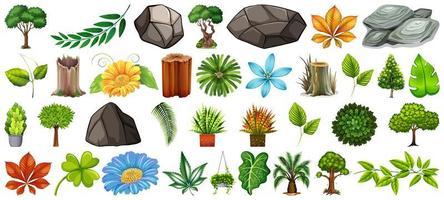 conjunto de diferentes elementos naturales aislados vector
