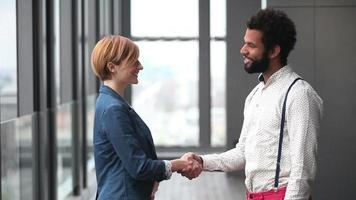 Profile of female creative director and male advertising executive shaking hands video