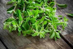 bunch of raw green herb marjoram on a wooden table photo