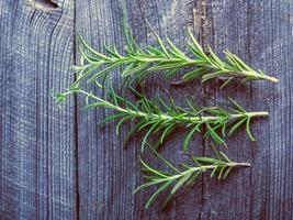 sprigs of fresh rosemary on the table photo