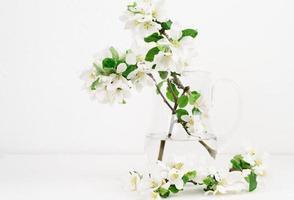 flores de manzana recién cogidas