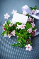 weigel hermosas flores rosadas foto