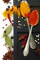 Spices border.Isolated on white photo
