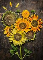 Sunflowers composing on rustic wooden background, top view