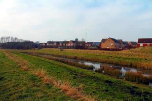Norfolk Farms