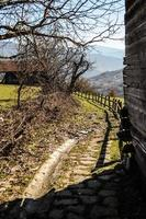Farm road photo