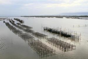 Shellfish farm, Thailand photo