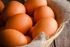 Fresh farm eggs photo
