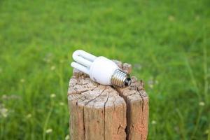 Lighting Bulb Lamp