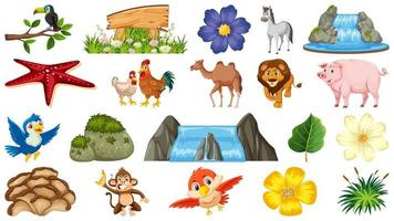 Set of animals and natural plants scenes vector