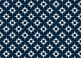 Blue and White Star Pattern