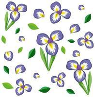 Set of cute purple flowers and leaves vector