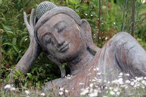 buddha figure in grass photo