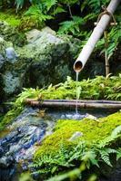 Traditional bamboo fountain in Japanese garden photo