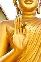 hand of Buddha photo
