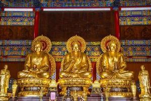 Buddha statues photo
