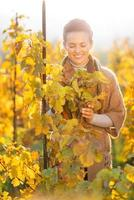 Happy woman standing in autumn vineyard and looking on branch